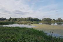 Linford Lakes Nature Reserve, Milton Keynes, United Kingdom