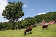 Tajima Ranch Park, Shinonsen-cho, Japan