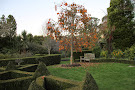 Puketarata Garden