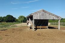 Tendercrop Farm, Newbury, United States