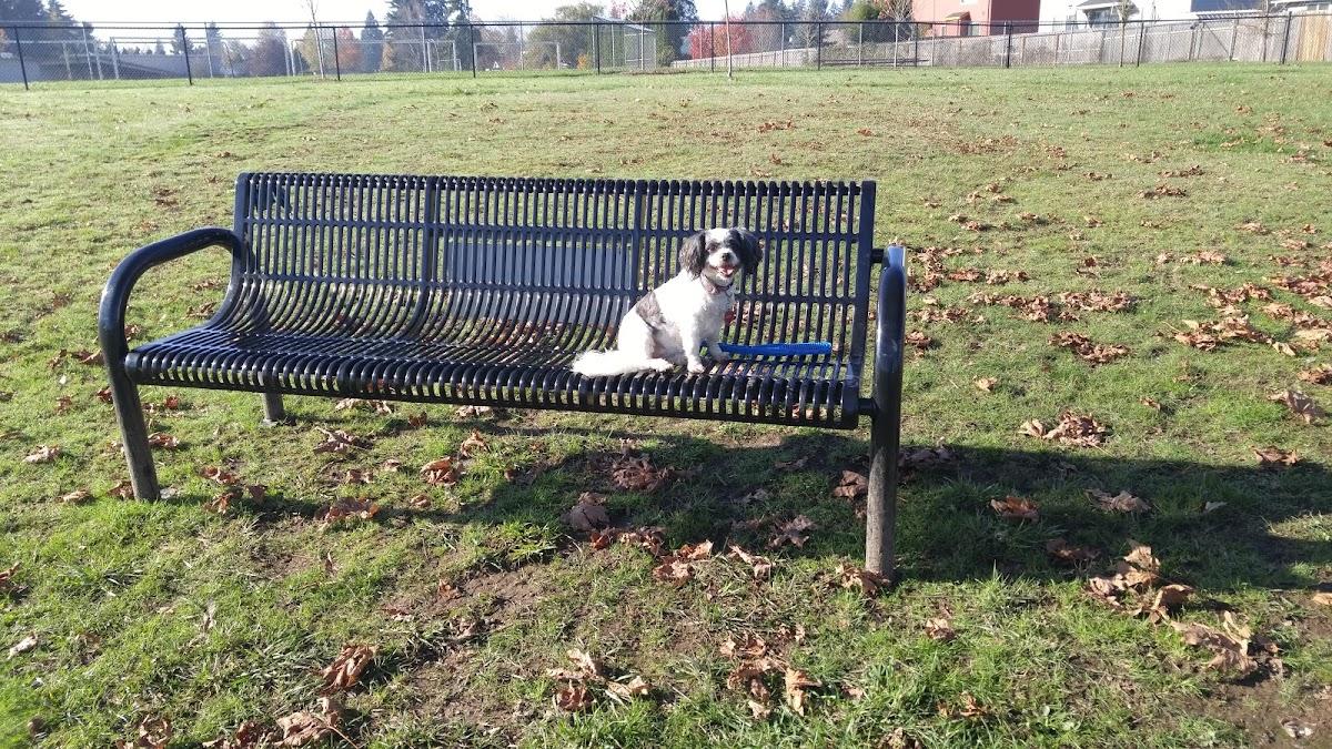 Monmouth Dog Park 1164 Alberta Ave E Image