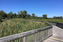 Eagle Marsh Nature Preserve, Fort Wayne, United States