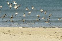 Hightower Beach Park, Satellite Beach, United States