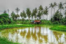 Explore Balik Pulau, Balik Pulau, Malaysia