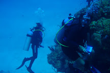 Happy Fish Divers, George Town, Cayman Islands