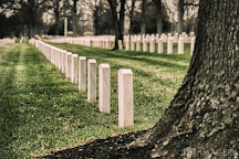 Zachary Taylor National Cemetery, Louisville, United States