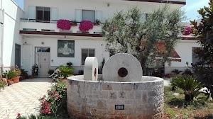 Oleificio Salamida Alberobello | Olio Extravergine di Oliva Pugliese