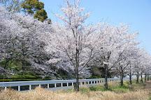 Higashihirao Park, Hakata, Japan