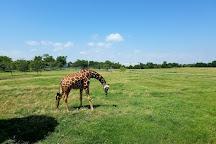 Tanganyika Wildlife Park, Goddard, United States