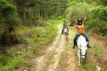 Garden Route Horse Trails, Wilderness, South Africa