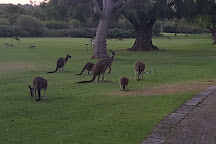 Yanchep National Park, Yanchep, Australia
