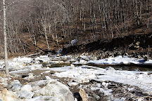 Woodford State Park, Vermont, United States