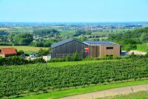 Winery Entre-Deux-Monts, Westouter, Belgium