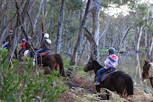 Spring Creek Horse Rides, Bellbrae, Australia
