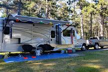 Kohler-Andrae State Park, Sheboygan, United States