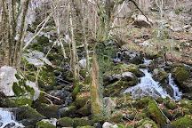 Nacimiento del Rio Ason, Ason, Spain