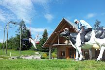 Teamwelt, Hoechenschwand, Germany