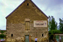 Champagne Tarlant, Oeuilly, France