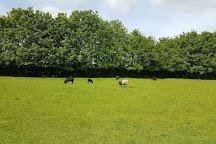 Ferry Farm Country Park, Hoveringham, United Kingdom