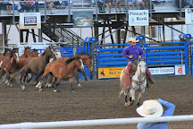 Cody Nightly Rodeo, Cody, United States
