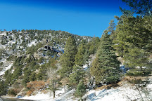 Cimarron Canyon State Park, Eagle Nest, United States