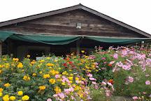 Green String Farm, Petaluma, United States
