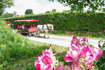 La Michaudiere - Ferme du Cheval de Trait, Juvigny-sous-Andaine, France