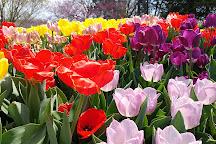 Ted Ensley Gardens, Topeka, United States