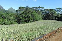 Lycee Agricole Opunohu, Moorea, French Polynesia