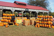 Gentry's Farm, Franklin, United States