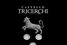 Castello Tricerchi, Montalcino, Italy