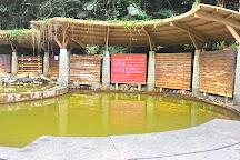 Beipu cold springs, Beipu, Taiwan