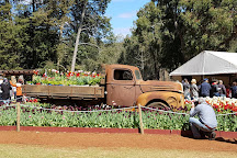 Araluen Botanic Park, Western Australia, Australia
