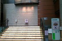 Mitsui Memorial Museum, Chuo, Japan