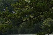 Lago di Monate, Travedona-Monate, Italy