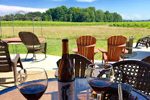 Cogdal Vineyards, South Haven, United States