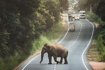 Kalawewa National Park, Kekirawa, Sri Lanka