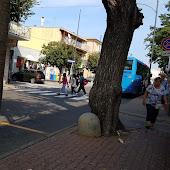 Автобусная станция   Olbia
