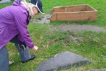 Petroglyph Beach State Historical Site, Wrangell, United States