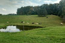 Blackman Homestead Farm, Lockport, United States
