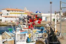 Port Gardian Capitainerie, Saintes-Maries-de-la-Mer, France