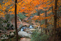 Tom Branch Falls, Great Smoky Mountains National Park, United States