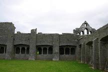 Ardfert Friary, Ardfert, Ireland