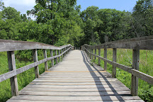 Rattray Marsh Conservation Area, Mississauga, Canada