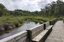 Currituck Banks Reserve, Corolla, United States