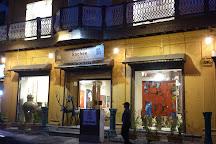 Sachee art gallery, Nagpur, India
