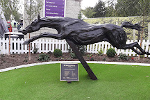 Leopardstown Racecourse, Dublin, Ireland