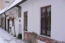 Vino Fiala, Modra, Slovakia