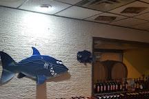 Briali Vineyards, Fremont, United States