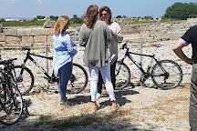 The Bikes, Fasano, Italy